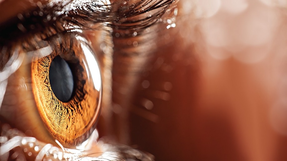 Close-up view of an eye