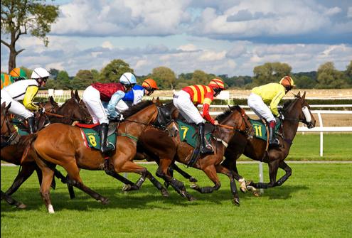Four jockeys riding four horses in a Horse race